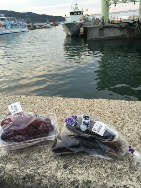 岩屋港でお土産を購入。淡路島産のナスとブドウ。